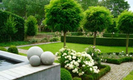 Pourquoi confier l'aménagement de son jardin à un professionnel