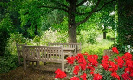 Les étapes de l'aménagement de jardin