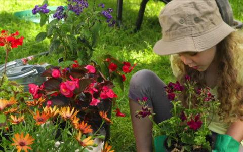 Les conseils pour un bon cadeau de jardinage