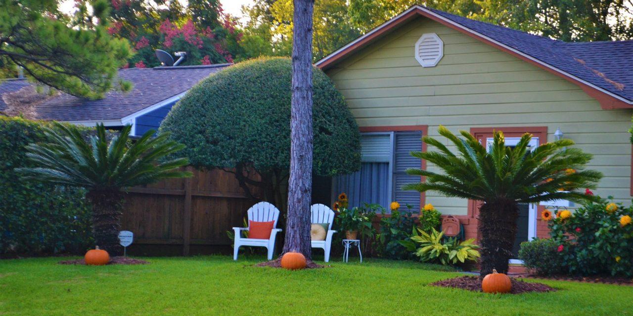 Quelques idées pour décorer votre jardin